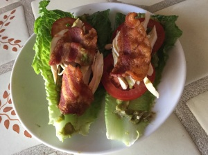 Romaine lettuce, guacamole, tomatoes, leftover chicken and bacon...how goodmismthat????